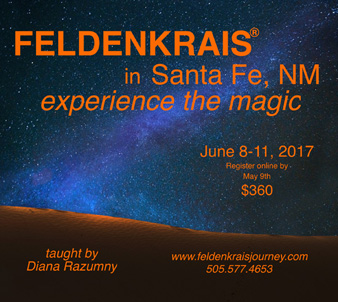Santa Fe Night Sky